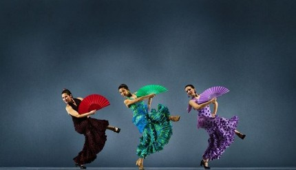 flamenco brescia